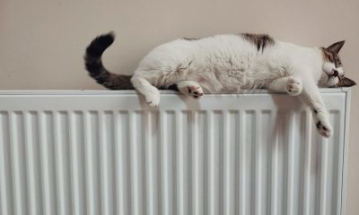 Comment purger ses radiateurs en 5 étapes 49