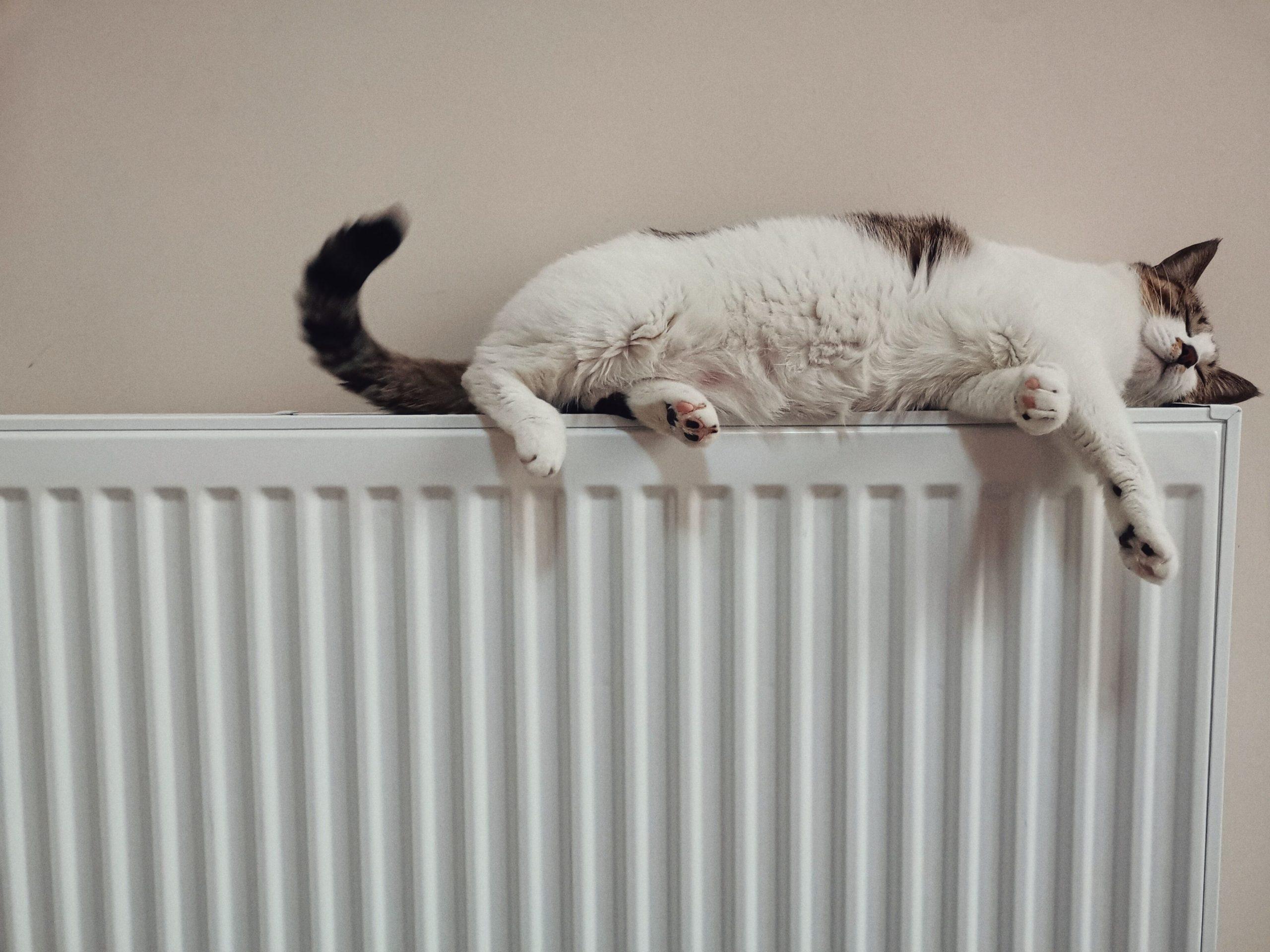Comment purger ses radiateurs en 5 étapes 1