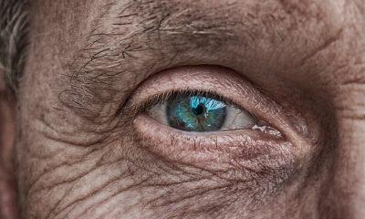 Comment lutter efficacement contre la vieillesse? 16