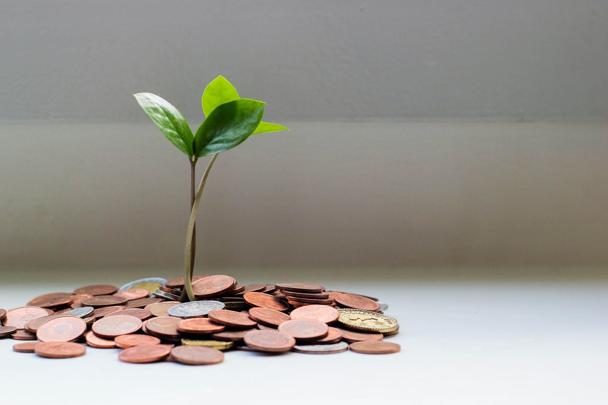 5 solutions pour gagner de l'argent sur internet 1