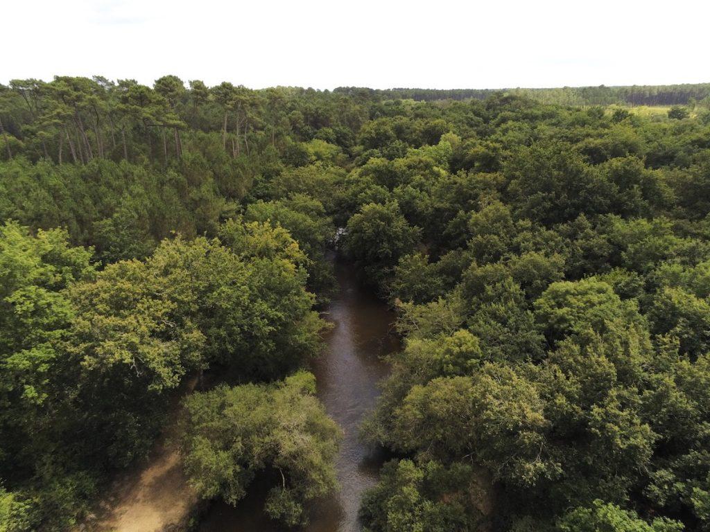 Balades et randonnées au parc naturel régional des landes de Gascogne 7